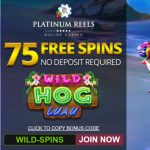 Wild Hog Luau online slots for real money