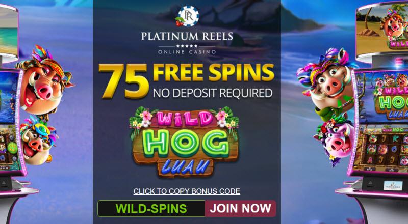 dream casino punta cana Slot Machine